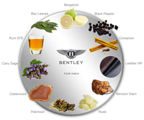 bentley_for_men_nuty